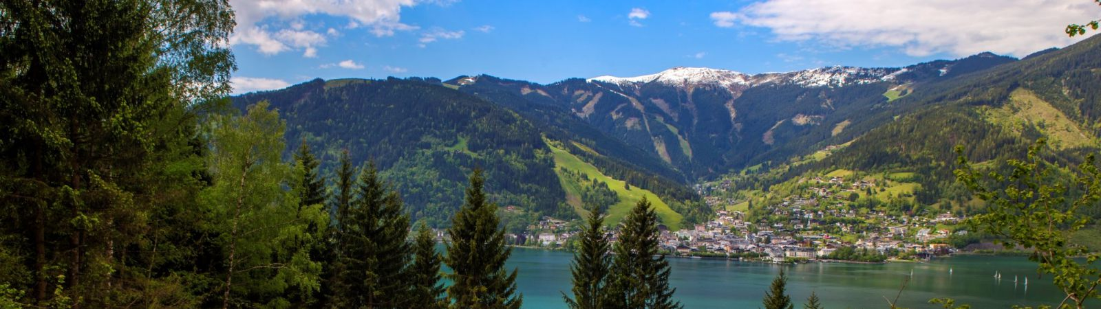 thumersbach berg in zell am see
